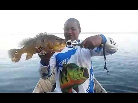 Selvagem e Xerife em Itapura, pescaria esportiva,...