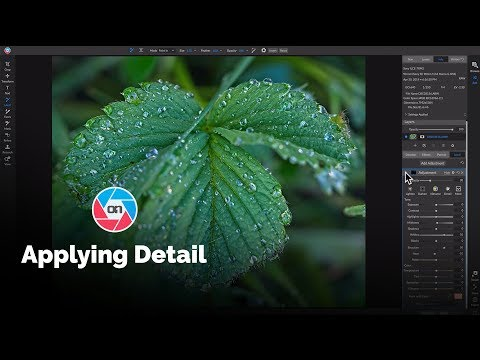 Applying Detail in ON1 Photo RAW - ON1 Recorded Webinar