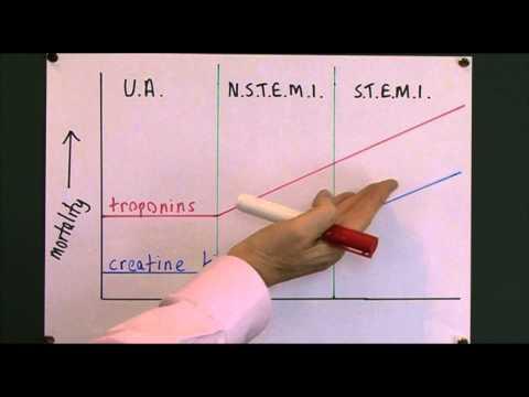 Cardiology 7, Cardiac markers