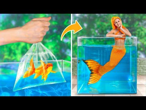 Hidup Di Bawah Air Selama 24 Jam! Tantangan Air!