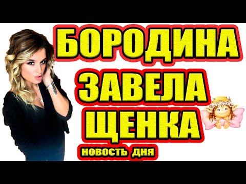Дом 2 НОВОСТИ - Эфир 15.01.2017 (15 января 2017) (видео)
