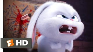 The Secret Life of Pets - You Know Tiny Dog? Scene (6/10) | Movieclips full download video download mp3 download music download