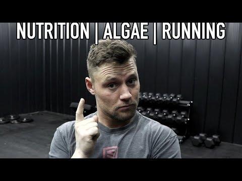 Nutrition  Algae  Running