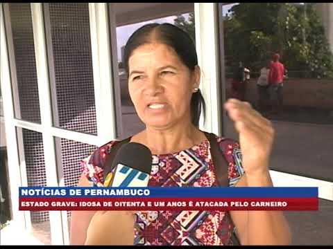 [BRASIL URGENTE PE] Idosa é atacada por carneiro de estimação, na zona rural de Orobó