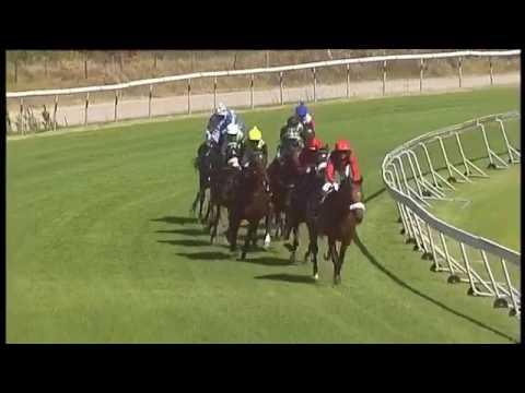 2017.01.28 Cape Derby (RSA) - Edict of Nantes (видео)