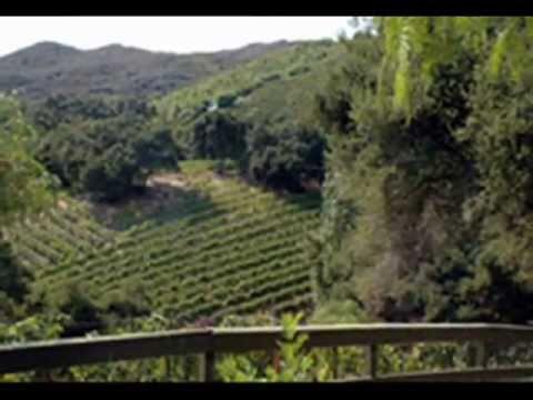 Wineries in Malibu - Wine Tasting in Los Angeles - Winery Guide.wmv