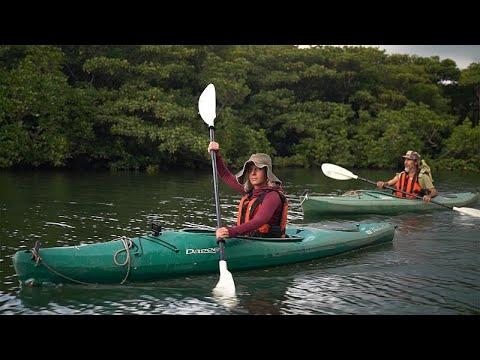 Οκινάουα: Νησί Ιριομότε, μια «Disneyland της Φύσης»