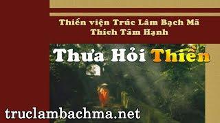 Sách nói  - Thưa hỏi Thiền