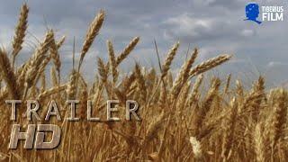 """""""Du bist, was du isst"""" - ein Film, der Dich sicherlich zum Nachdenken bringt!"""