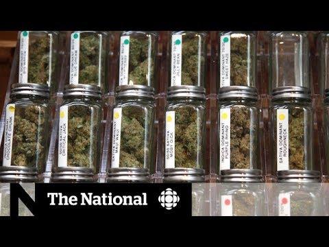 Weed strains: Marijuana marketing - spin or science?