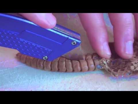 Что у гремучей змеи в погремушке - DomaVideo.Ru