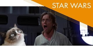 Star Wars (1977) - The Force Exposed