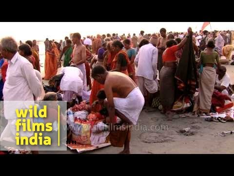 Video Dressing up after the holy bath: Gangasagar mela download in MP3, 3GP, MP4, WEBM, AVI, FLV January 2017