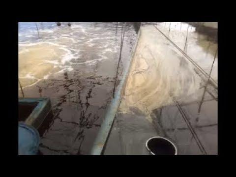 .Micro bubble Generator for Shrimp farming . #02