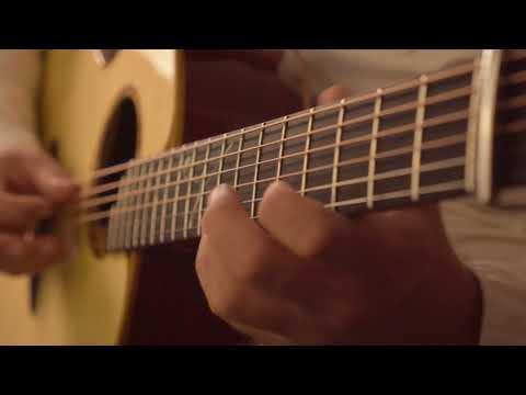 Alan Gogoll - One Line Fox (видео)
