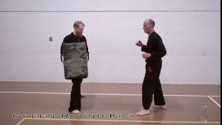Green Belt Round Kick