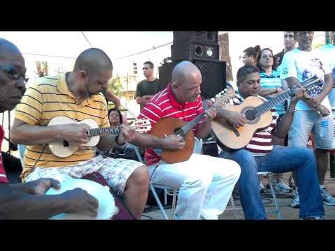 FLÔR DO ABACATE = DIA  NACIONAL  DO CHORO  EM OLARIA 2013