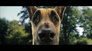 Nonton Marmaduke Trailer  German  Hd Film Subtitle Indonesia Streaming Movie Download