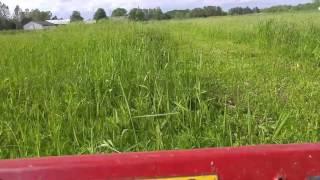 10. Toro MX6000 cutting deep grass