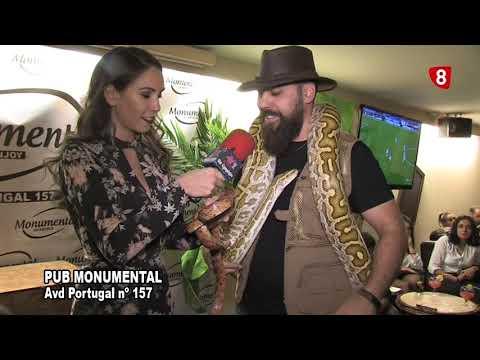 PUB MONUMENAL NOCHE DE ANIMALES