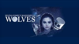 Selena Gomez, Marshmello - Wolves (Audio)