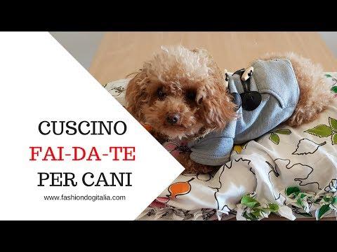 Cuscino/ Cuccia per il cane fai da te senza cucire!