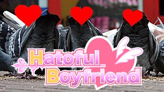 HOT JAPANESE PIGEONS   Hatoful Boyfriend