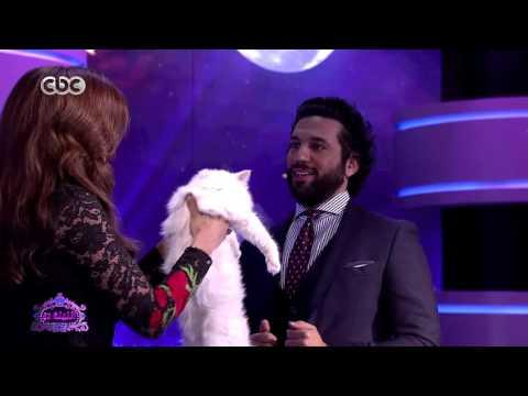 حسن الرداد يكشف السر وراء عُقدته من القطط وعدم حبه لهم