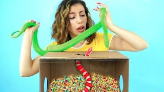 What's in the Box Challenge!!! I touched SLIME, orbeez, meat, live and dead animals in the box!!! It was a SCARY challenge & now I challenge you to try it!My Previous Video➜ http://bit.ly/2pn5ARDCLICK for a surprise➜ http://ctt.ec/d6p4uCHECK OUT: Testing Funny PRANK Gadgets & Toys! ➜ http://bit.ly/2nnKEoB10 Easy Pranks You NEED To Try On Friends & Family! ➜ http://bit.ly/2mW8v3H5 Ways To Turn Crayons Into Makeup! ➜ http://bit.ly/2kC3nzT5 Ways To Turn Chalk Into Makeup!  ➜ http://bit.ly/2n2TAjs.............................................................................................STALK MY PERSONAL ACCOUNTS:Snapchat ➜ https://www.snapchat.com/add/juliagilmanTwitter➜ https://twitter.com/BeautyTakenInInstagram ➜ http://instagram.com/JuliaGilmanFacebook➜ http://www.facebook.com/BeautyTakenInTumblr➜ http://beautytakenin.tumblr.com/.............................................................................................BUSINESS INQUIRES: JuliaGilmanBiz@gmail.com