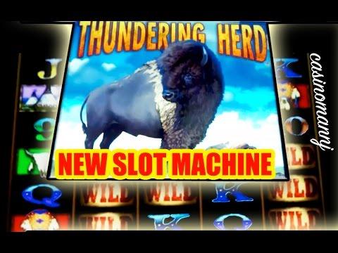NEW! Thundering Herd - Bonus Feature+Progressive Win - Slot Machine Bonus