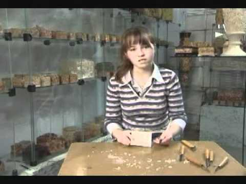 , title : 'Урок резьбы по дереву для начинающих - Татьянка'