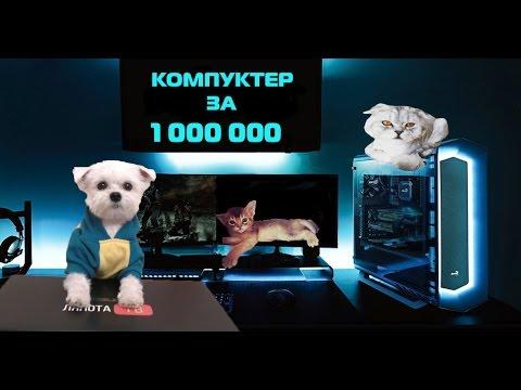 Пёс-блогер купил игровой ПК за 1 млн рублёв