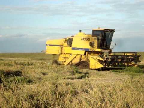 NH 8055 colhendo arroz em Maçambara -RS Tiago Tamiozzo - 2010