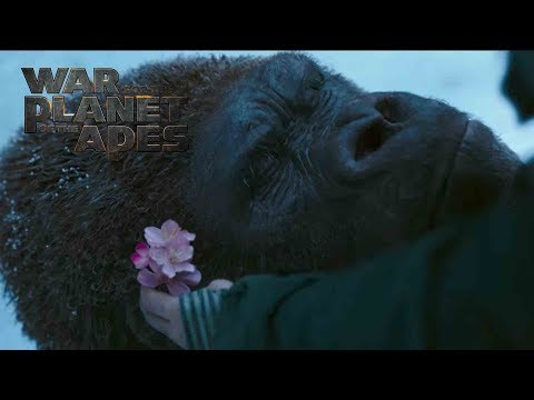 War for the Planet of the Apes TV Spot 'We Are the Beginning and the End'