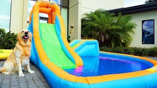 Video DOG GETS PERSONAL WATER PARK FOR THIRD BIRTHDAY MP3, 3GP, MP4, WEBM, AVI, FLV September 2018