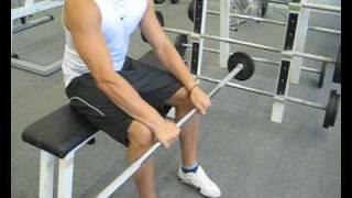 Videoanleitung zur Übung Unterarmstrecken mit einer Langhantel. Diese Übung trainiert die Unterarmmuskulatur. Weitere Übungen und alles rund um das Thema Fitness auf: http://www.wikifit.de