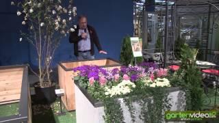 #952 Ideen zur Bepflanzung von Hochbeeten