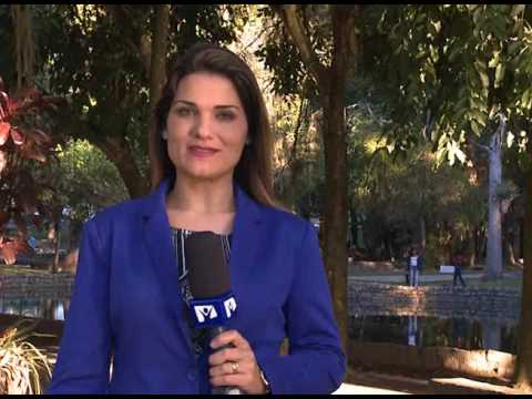 Conheça o Bosque da Princesa em Pinda