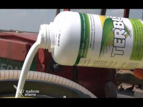 Upotreba zemljišnih herbicida u suncokretu