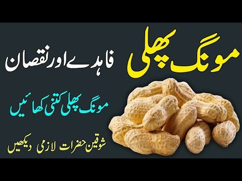 Mungfali Ke Fayde Aur Nuqsan || Health Benefits Of Peanuts || Disadvantages Of Peanuts In Urdu/Hindi