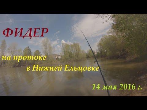 рыбалка в ельцовке новосибирск