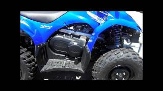 8. FBC - 2009 Yamaha Wolverine 450