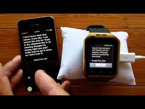 Video of Speech to Clipboard Pro