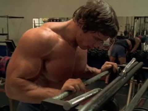 body - My tribute to Arnold, the greatest bodybuilder of all time.