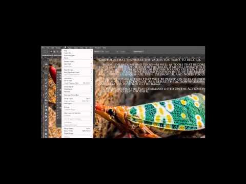 Adobe Photoshop Tutorial 30 - Actions Intermediate