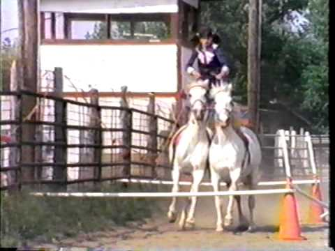 Jennifer Prior Village Animal ClinicNorth Palm Beach FL trick horseback riding as a youngster