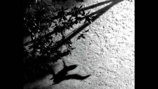 Download Lagu Max Richter - On the Nature of Daylight Mp3