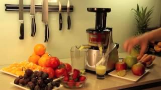 Slow screw juicer Guzzanti GZ 020