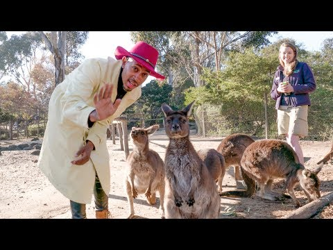 OMKalen Down Under: Kalen's First Time in Australia