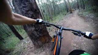 Daisy Hill Australia  city images : DAISY HILL MTB Jumping Ant - Specialized Stumpjumper FSR